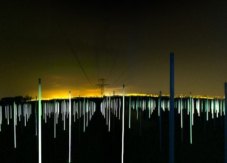 Flourescent lights under high tension lines show strength of electro-magnetic fields under the lines.  Photo courtesy of TreeHugger.com.  